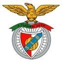 <h5>S L Benfica</h5><p>Consulte-nos para saber as condições especiais. Descontos válidos para todos os sócios</p>