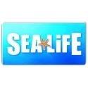 <h5>Sealife</h5><p>Consulte-nos para saber as condições especiais. Descontos válidos para todos os clientes e colaboradores do Sealife</p>